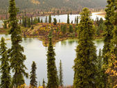 Fall rain on wilderness lake, Yukon T., Canada — Zdjęcie stockowe