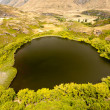 Green oasis in dry highlands of Central Otago, NZ - Lizenzfreies Foto