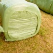 Stock Photo: Haylage bales left outdoors for fermentation