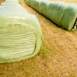 Haylage bales left outdoors for fermentation — Stock Photo #11393485