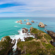 Stock Photo: Beautiful rocky Nugget Point of NZ Catlins Coast