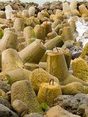 Tetra-pod betonové sloupky jako ochranné nábřeží — Stock fotografie