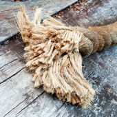Frayed end of sisal rope lying on weathered wood — Stock Photo