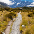 Hooker Valley with Aoraki Mt Cook Southern Alps NZ — Stock Photo #11801615