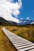 Hooker Valley with Aoraki Mt Cook Southern Alps NZ — 图库照片