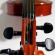 Stock Photo: Violin Strings