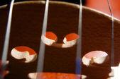 Violin strings — Stock Photo
