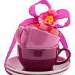Coffee Cups — Stock Photo #11531683