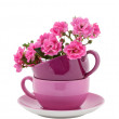 Coffee Cups with Pink Roses — Stock Photo #11734537