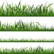 Stock fotografie: Grass Background