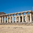 Paestum temple - Italy — Stock Photo #10779035
