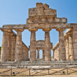 Paestum temple - Italy — Stock Photo #11645852