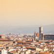 Florence Duomo view — Stock Photo #12345544