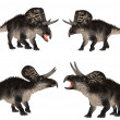 Zuniceratops Pack - Stock Photo