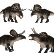 Zuniceratops Pack — Stock Photo