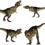 Постер, плакат: Tyrannosaurus Pack