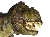 Tyrannosaurus' Head — Stock Photo