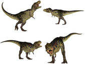 Tyrannosaurus Pack — Stock Photo