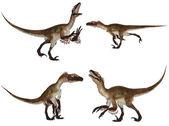 Utahraptor Pack — Stock Photo