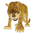 Angry Leopard - Stock Photo