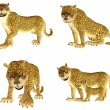 Leopard Pack - Stock Photo