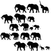 Background with elephants silhouettes — Stock Photo