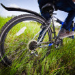 Bicycle wheel in the green grass — Stockfoto