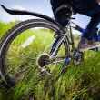 Bicycle wheel in the green grass — Stock fotografie