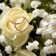 Stock Photo: Gold wedding rings of groom and bride on bunch of flowers.