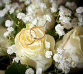 Gold wedding rings on flower — Foto Stock