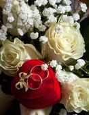 Bir kutu nikah yüzükleri — Stok fotoğraf
