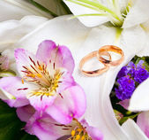 Gold wedding rings on flower — Stock fotografie