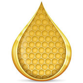 Honeycomb in drop — Stock Photo