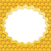 Honeycomb frame — Stock Photo