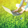 Young woman using laptop in park — Stock Photo