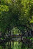 公园自然 serra 南埃斯特雷-葡萄牙 — 图库照片
