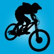 Stock Vector: Mountain biker