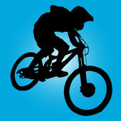 Mountain biker — Stock Vector
