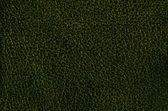 Dark green leather — Stock Photo