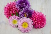 Homegrown fall garden flowers — Stock Photo