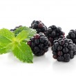 Fresh berry blackberry — Stock Photo #12410327