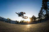 BMX Bike Stunt Table Top — Stock Photo