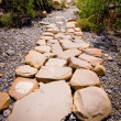Royalty-Free Stock Photo: Stone Path