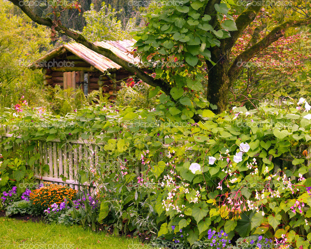 Charming hidden cabin in the garden — Stock Photo #11430975