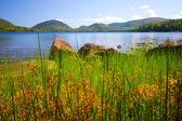 Lake Acadia Maine — Stock Photo