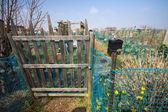 Brooklyn Community Garden — Stock Photo