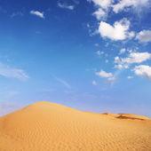 Aventuras en el desierto — Foto de Stock