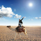 Pose on the camel — Stock Photo