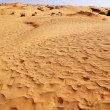 Sand in the desert — Stock Photo