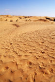 Sand in the desert — Stock Photo